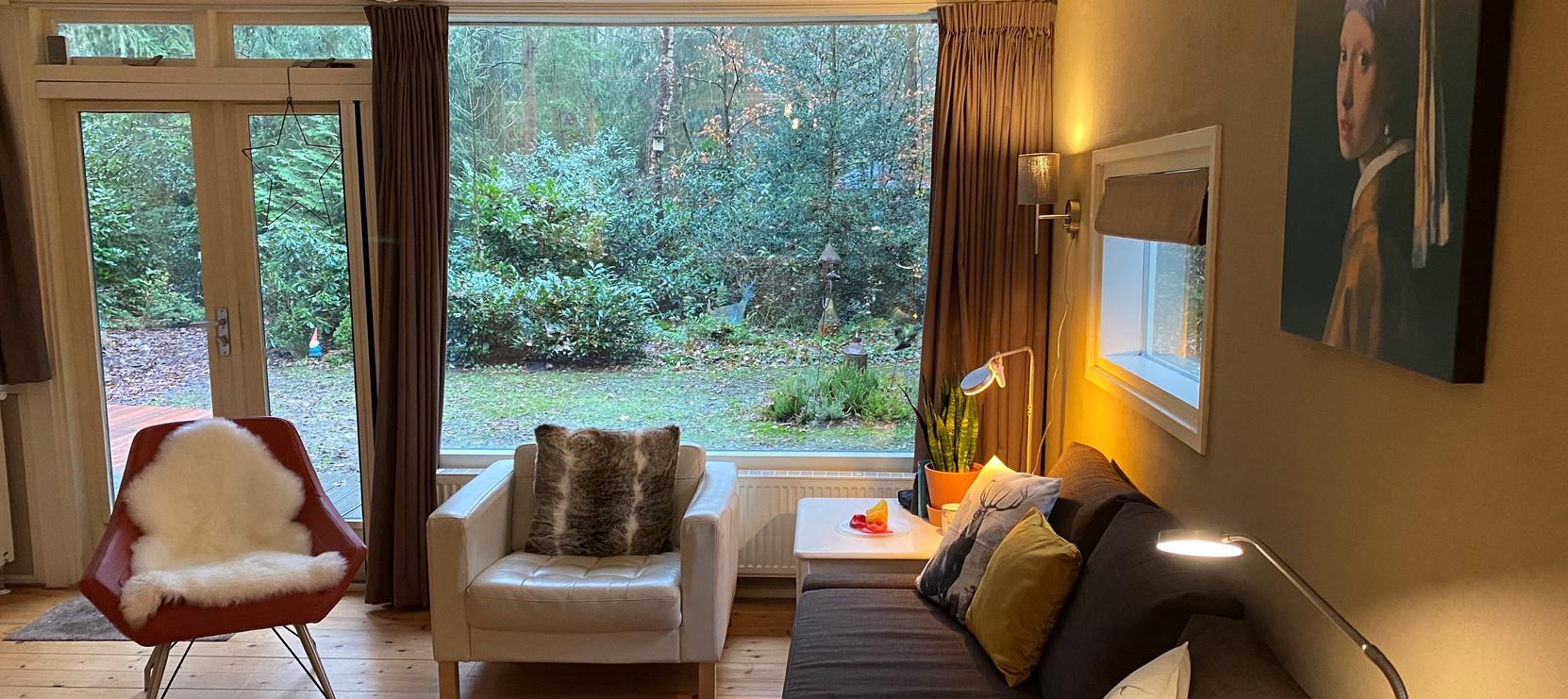 banner woonkamer uitzicht tuin.jpg