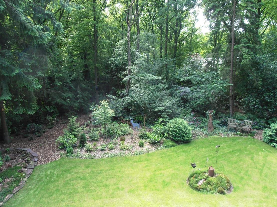 tuin op het Zuiden Boshuisje Wateren Drents Friese Wold