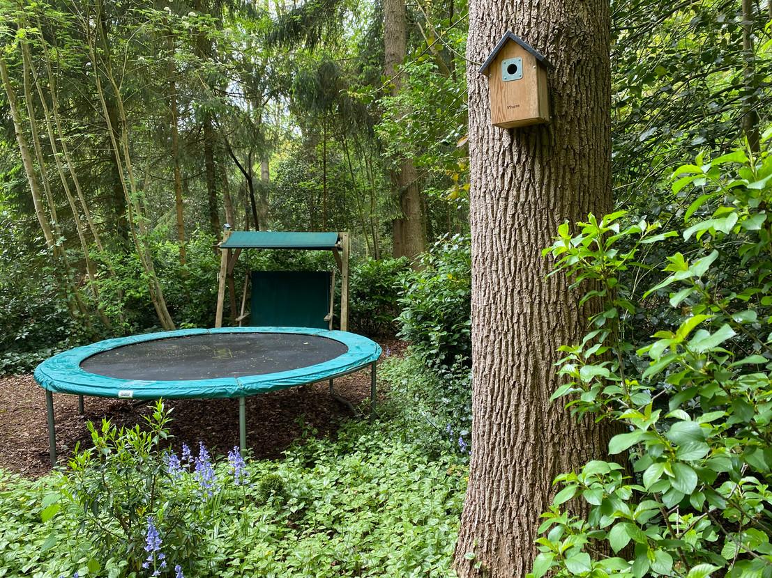 Boshuisje Wateren in Drenthe