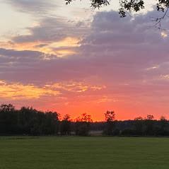 zonsondergang Boshuisje Doldersum Drenthe