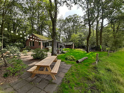 Boshuisje Doldersum - Natuurhuisje Doldersum - Natuurhuisje Drenthe
