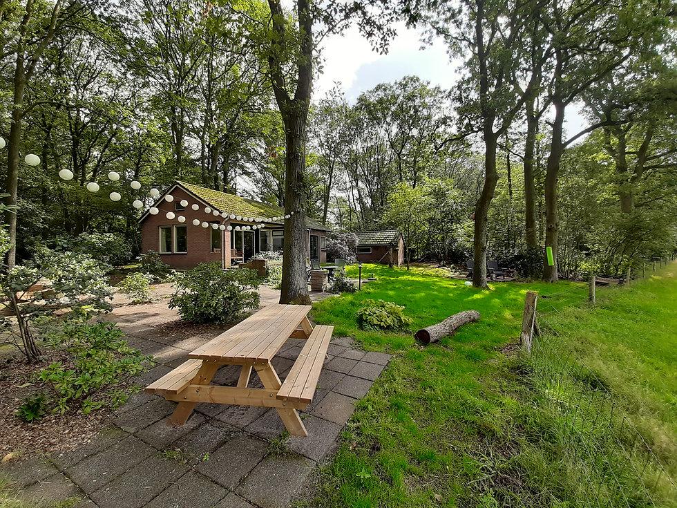 Vakantiehuis Boshuisje Doldersum - natuurhuisje in het drents Friese wold - honden van harte welkom