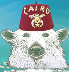 Cairo-polar-plunge-bear.jpg