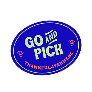 Richard Wilkins announces launch of GoAndPick on TODAY Show
