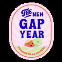 IPB0272_TheNewGapYear_Artboard gapyear16