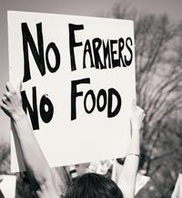 Thankful4Farmers no farmers no food.jpg