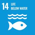 Thankful4farmers_UN_SDG_Goal_14