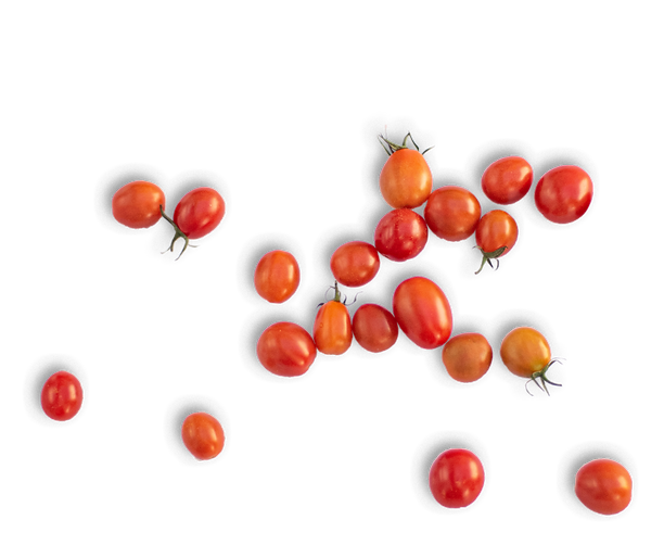 cherrytomatoes.png