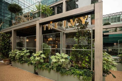 Accoya-fronted The Ivy restaurant