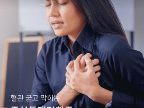 혈관 굳고 막히는 죽상동맥경화증