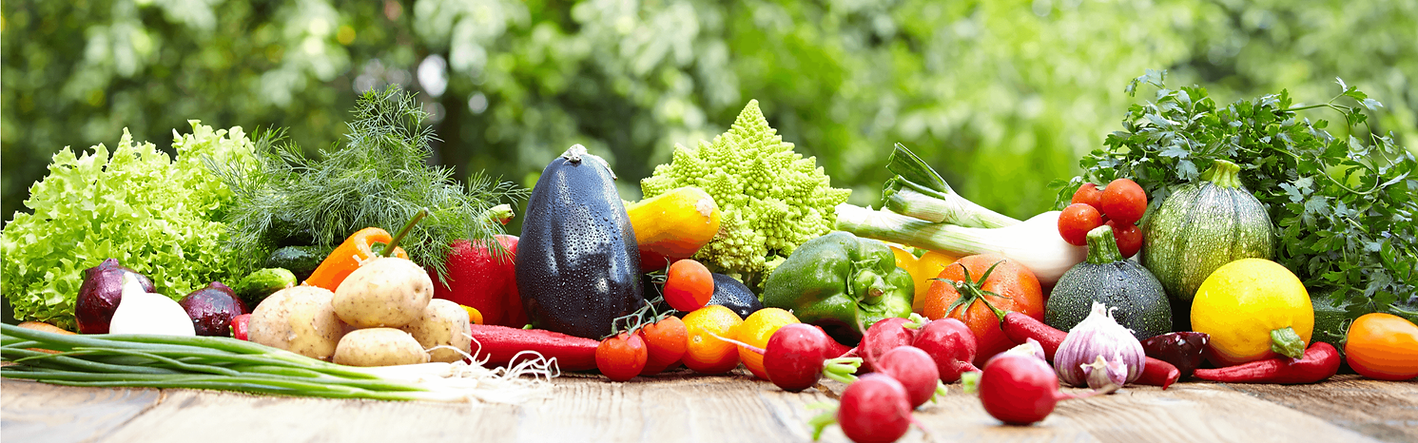 global-healthy-reference-diet-banner_211