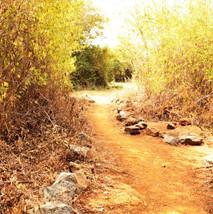 Camping, Hiking Kenya