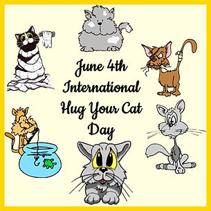 6-4 INTERNATIONAL HUG YOUR CAT DAY.jpg