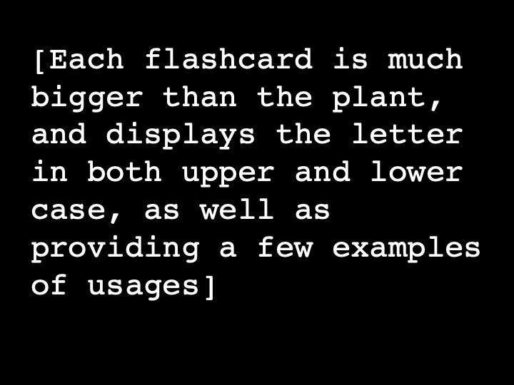Each flashcard is much bigger than the plant, and displays the letter in both upper and lower case, as well as providing a few examples of usages