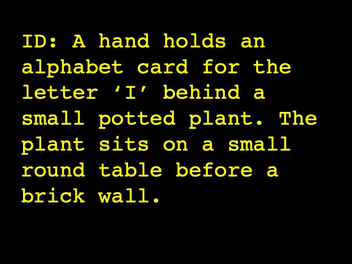 A hand holds an alphabet card for the letter 'I' behind a small potted plant. The plant sits on a small round table before a brick wall.