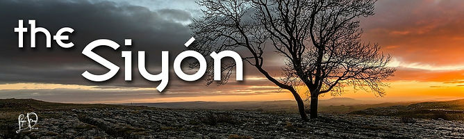 The Siyon continuing series book cover.