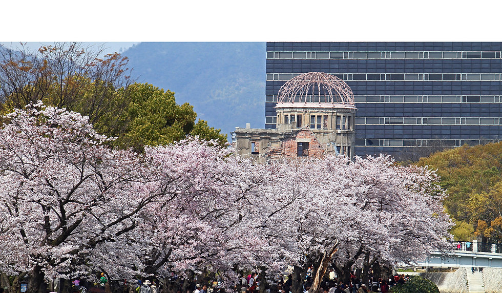 HiroshimaSakura_2355phsmpanobrdr.jpg