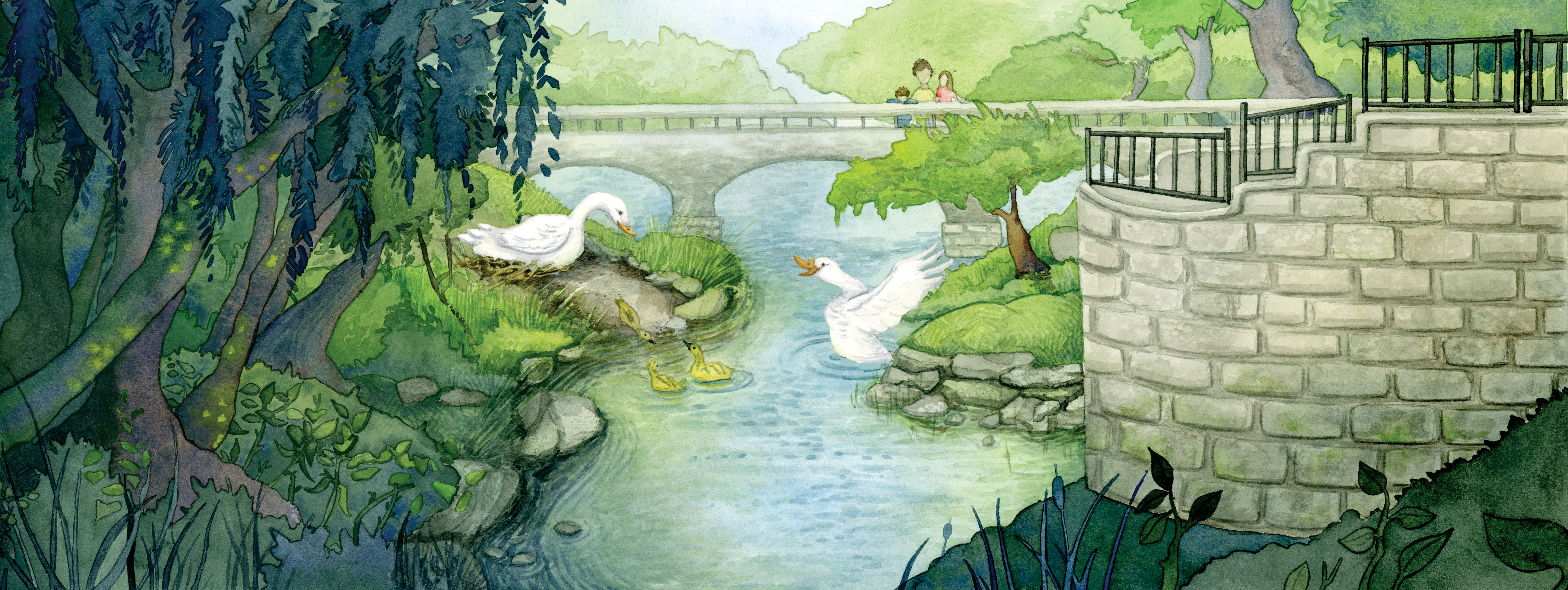 Turtle Creek_With White Geese.jpg
