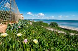 Pomeriggio in Costa Azzurra