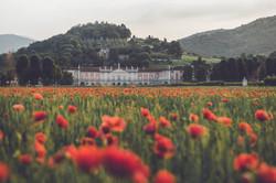 Villa Fenaroli e i suoi papaveri
