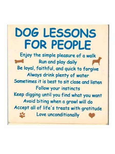 Coaster-Dog Lessons