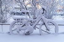 Bike with snow small.jpeg