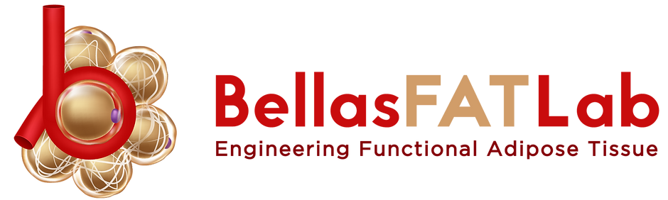 BellaFatLab_logo_3_edited.png
