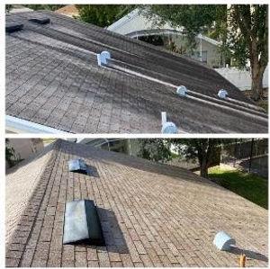 roof pic (2).jpg