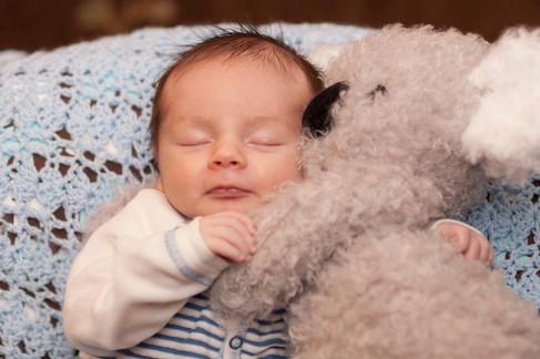 Newborn dozes while snuggled up to a stuffed koala toy.
