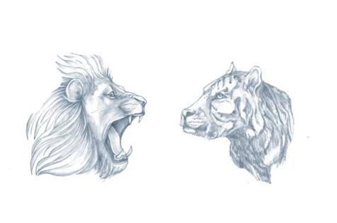 64_LionSream_Tiger_1.jpg