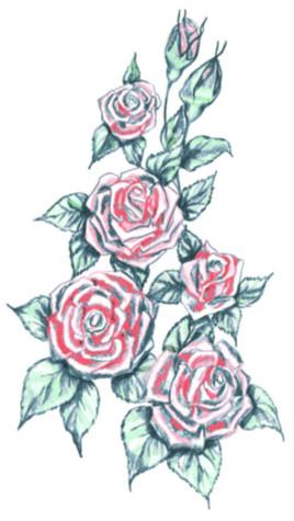 Flo_RoseBunchRed2.jpg