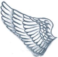 WingHalf.jpg