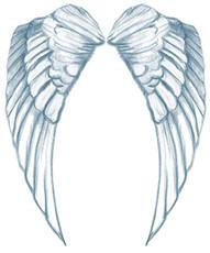 WingsAngel.jpg
