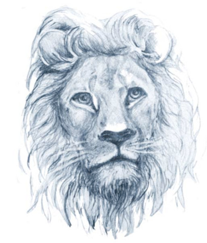 61_LionheadTattoo_No BG_agedMore_1.jpg