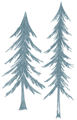 Tree_Pine.jpg