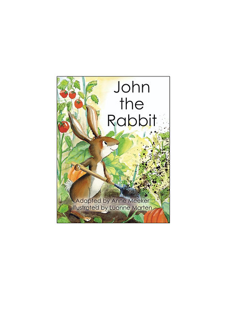 Ten Little Books: JOHN THE RABBIT