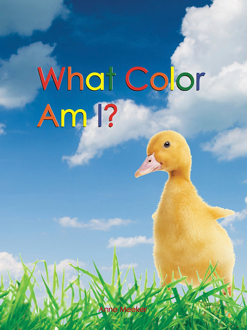 Big Book, movies & song: WHAT COLOR?