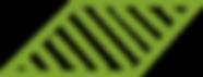 Spengler-grün2.png
