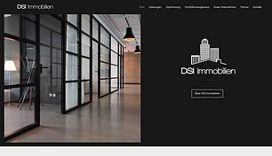 DSI Website