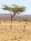 Désert au Sud du Maroc