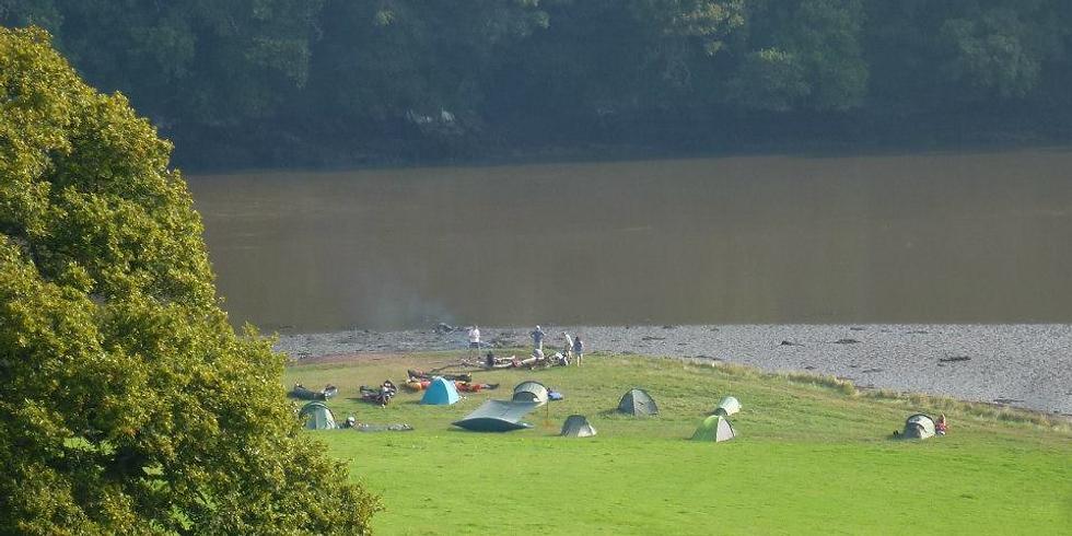 Camping at Sharpham
