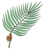 Palms transparent.png