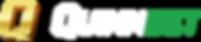Lockup-QuinnBet_Green_Reverse_RGB_72dpi.png