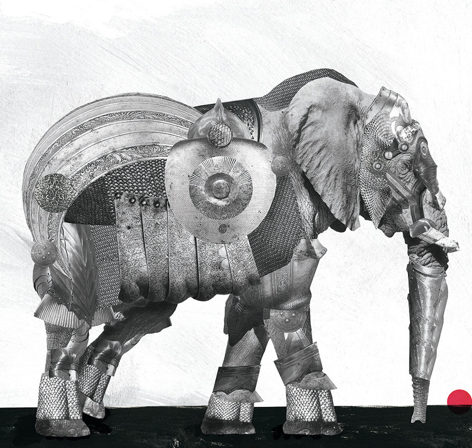 Elephant in Amour