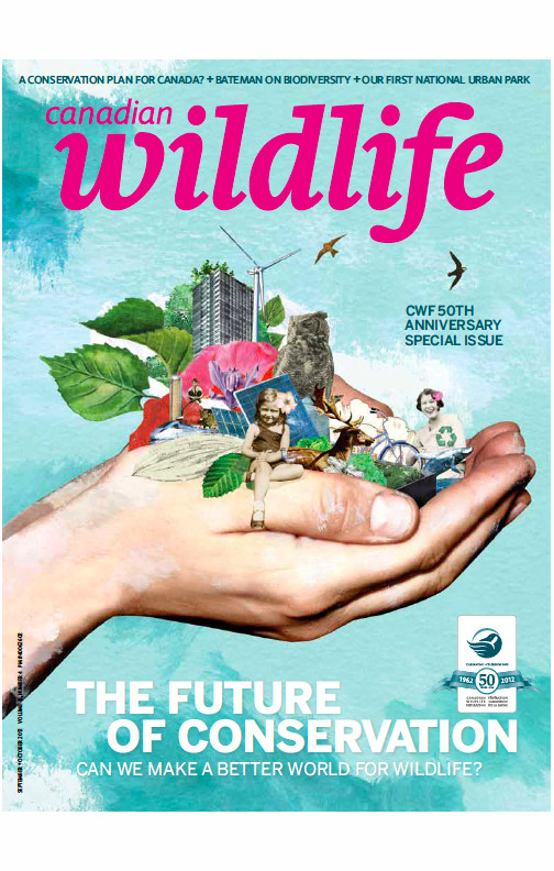 Cover of Canadian Wildlife