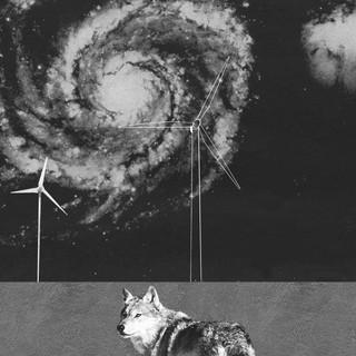 Wolf Turbine