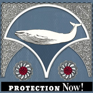 Protect the Whales