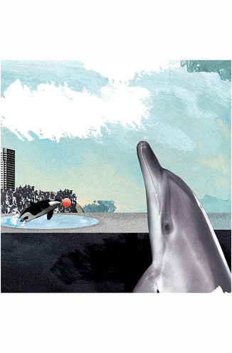 No More Captivity
