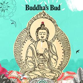 Buddha's Bud