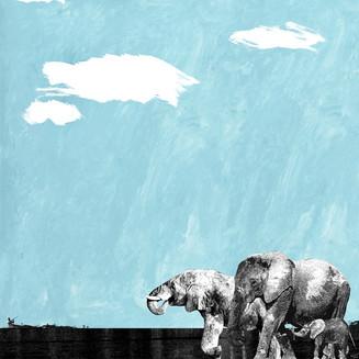 No More Poaching